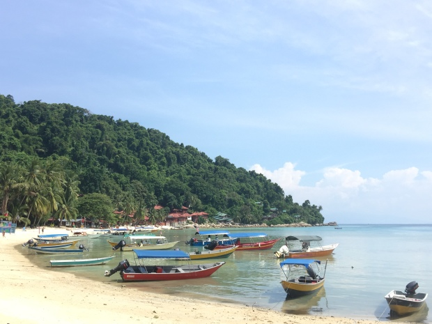 Coral Beach during the day